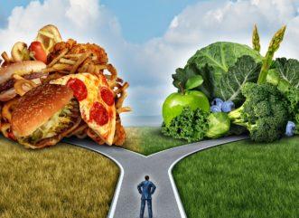 Zdrowa dieta kierowcy w trasie