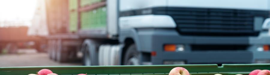 Transport żywności – wymagania